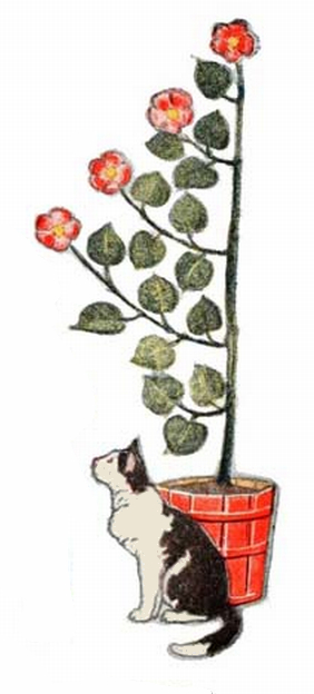 cat with potted floral plant