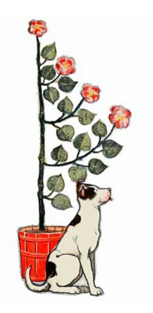 dog with potted flowering tree