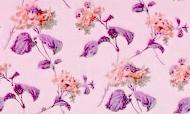 purple-leafed rose pattern