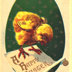 easter-chick-feinberg