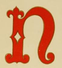 emblematic-n