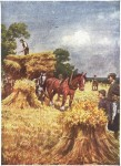 fall hay harvest drawing