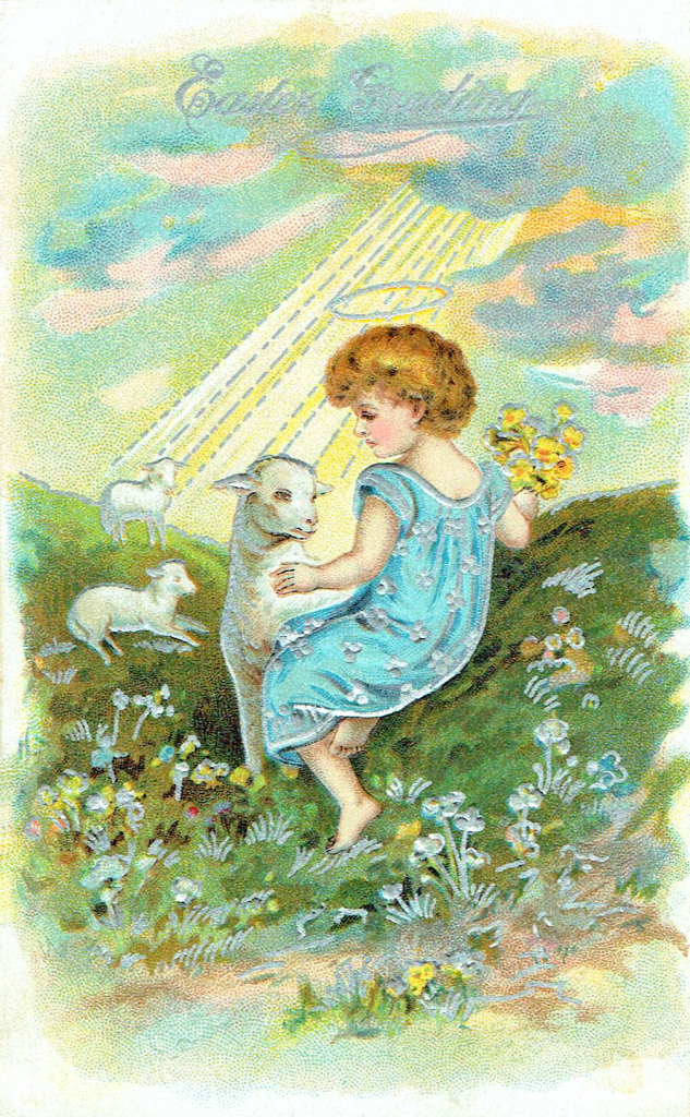 angel with lambs