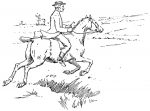 galloping horse and rider illustration
