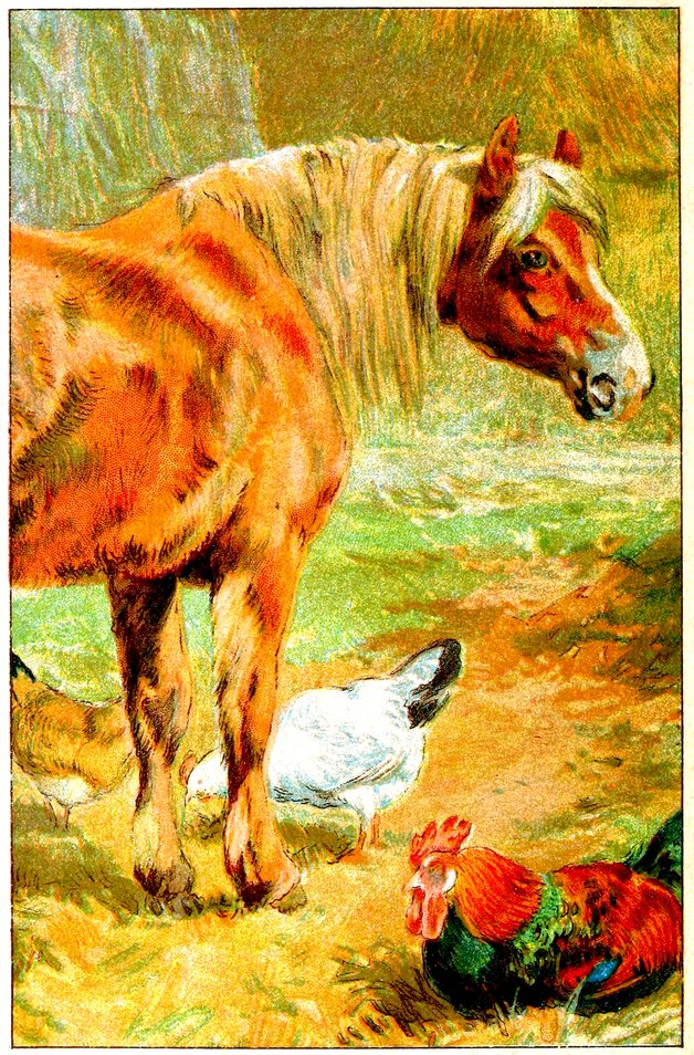 Vintage book illustration of horse with chickens and a rooster.